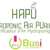 HAPU* Hydroponic Air Purifier